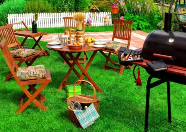 Backyard Summer BBQ & Cocktail Party Or Picnic On The Lavn Scene And Concept