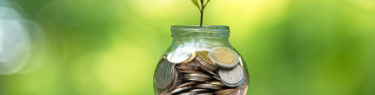 Businessman hand holding  coin money cover growing plant.  Plant growing out of coins with filter effect, money growing and small tree in jar, green nature background.  Investment concept.